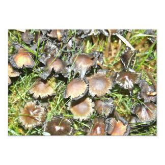 Cogumelo com convite ondulado das bordas