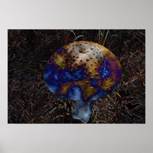 Cogumelo psicadélico impressão