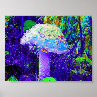 cogumelo psicadélico poster