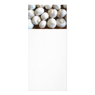 Cogumelos 10.16 X 22.86cm Panfleto