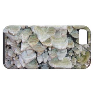 Cogumelos selvagens capa para iPhone 5