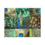 Colagem azul verde da foto do pavão impressão em canvas