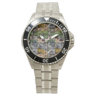 Colagem da foto da lontra, relógio de aço