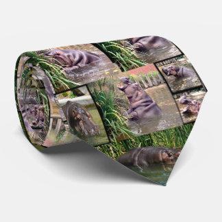 Colagem da foto do hipopótamo, laço de seda dos gravata