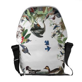 Colagem de Audubon da bolsa mensageiro dos animais