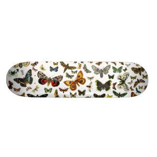 Colagem européia da borboleta shape de skate 19,7cm