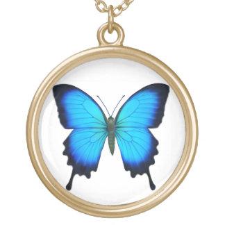 Colar azul da borboleta de Papilio Ulysses