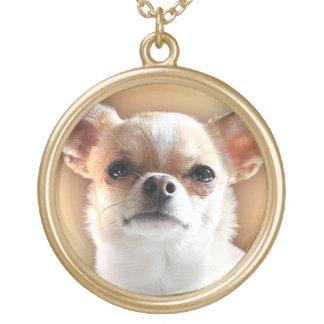 Colar Banhado A Ouro Retrato do cão da chihuahua