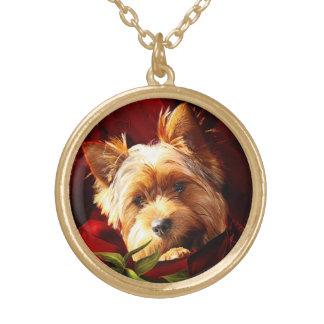 Colar Banhado A Ouro Yorkshire terrier encaixado nas rosas vermelhas