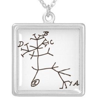 Colar Banhado A Prata A árvore de Darwin