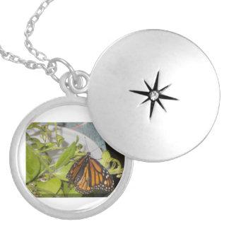 Colar Banhado A Prata A borboleta de monarca