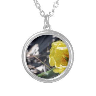 Colar Banhado A Prata abelha iridescente na flor dos nopales