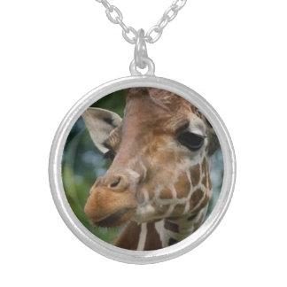 Colar Banhado A Prata Amantes do girafa