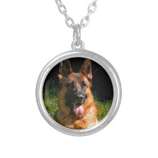 Colar Banhado A Prata Animal de estimação do cão de german shepherd