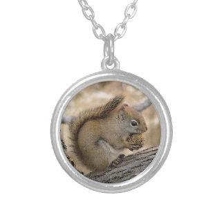 Colar Banhado A Prata Arte do esquilo