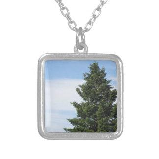 Colar Banhado A Prata Árvore de abeto verde contra um céu claro