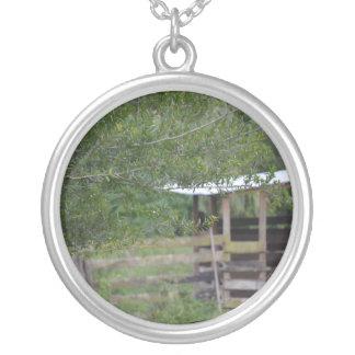 Colar Banhado A Prata árvore e foto velha de florida do celeiro