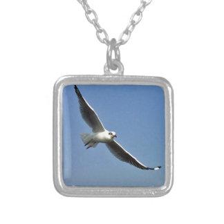 Colar Banhado A Prata As gaivotas são pássaros bonitos