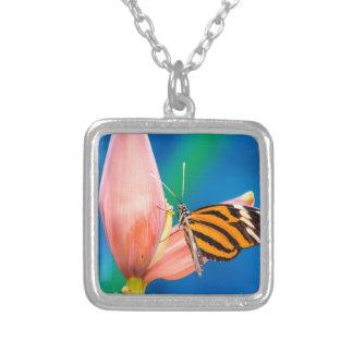 Colar Banhado A Prata Aterragem da borboleta na flor roxa