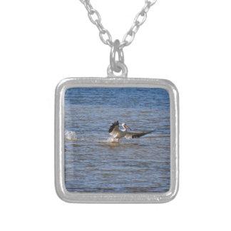 Colar Banhado A Prata Aterragem do pelicano