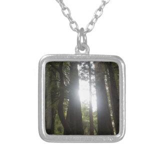 Colar Banhado A Prata Beleza da floresta