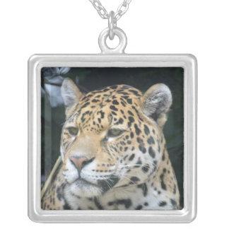 Colar Banhado A Prata Brilho de Jaguar