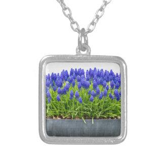 Colar Banhado A Prata Caixa cinzenta da flor do metal com os jacintos de