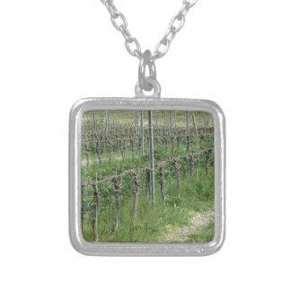 Colar Banhado A Prata Campo desencapado do vinhedo no inverno. Toscânia,