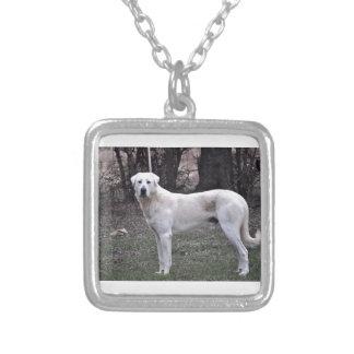 Colar Banhado A Prata Cão de Akbash