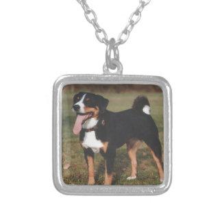 Colar Banhado A Prata Cão de Appenzeller Sennenhund