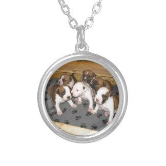 Colar Banhado A Prata Cão de filhotes de cachorro de Staffordshire