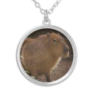 Colar Banhado A Prata Capybara