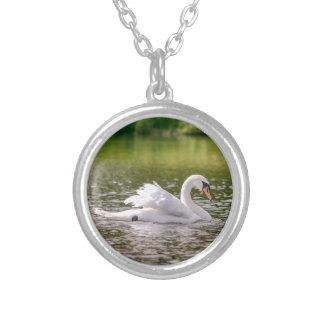 Colar Banhado A Prata Cisne branca em um lago