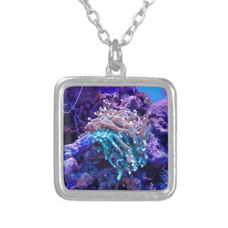 Colar Banhado A Prata coral-1053837