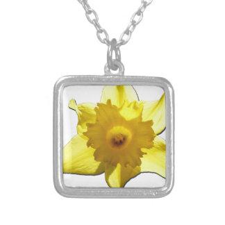 Colar Banhado A Prata Daffodil 1,0 da trombeta amarela