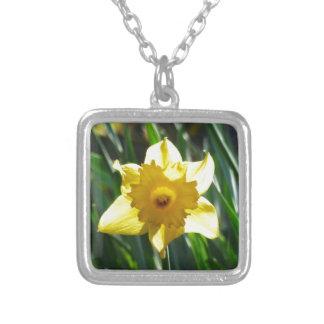Colar Banhado A Prata Daffodil amarelo 03.0.g