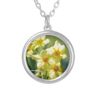 Colar Banhado A Prata Daffodils bonito, narciso 03,1