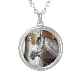 Colar Banhado A Prata Destin - abrigo do cavalo