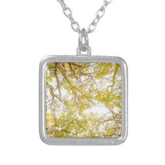 Colar Banhado A Prata Dossel de floresta dourado de Aspen