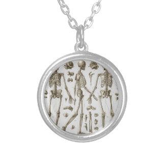 Colar Banhado A Prata Esqueletos da enciclopédia de Brockhaus & de Efron