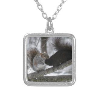 Colar Banhado A Prata Esquilo preto