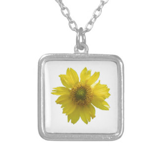 Colar Banhado A Prata Flor amarela