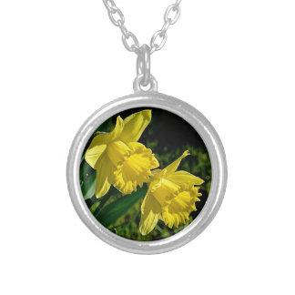 Colar Banhado A Prata Flor do mês do nascimento de março do Daffodil