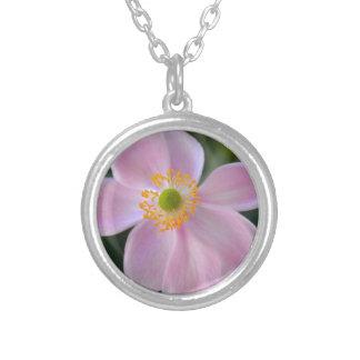 Colar Banhado A Prata Flor japonesa cor-de-rosa da anêmona