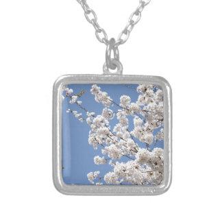 Colar Banhado A Prata Flores brancas da cereja
