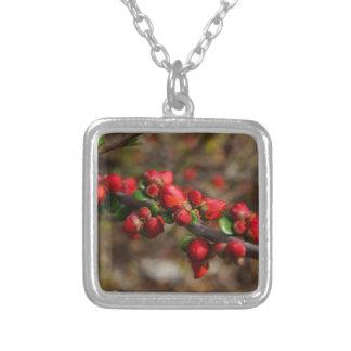 Colar Banhado A Prata Flores vermelhas arborizados
