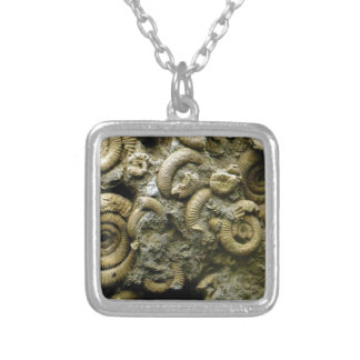 Colar Banhado A Prata fósseis encaixados dos caracóis