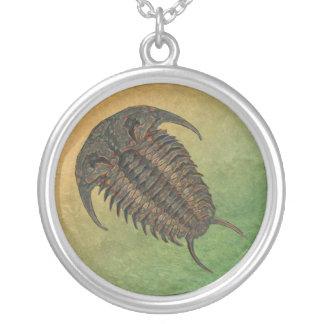 Colar Banhado A Prata Fóssil Trilobite de Ceraurus