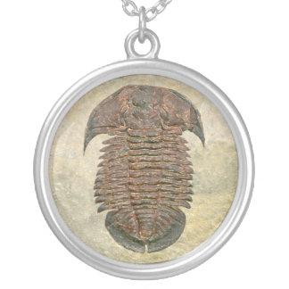 Colar Banhado A Prata Fóssil Trilobite de Yuepingia