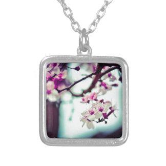 Colar Banhado A Prata Foto Pastel da flor de cerejeira